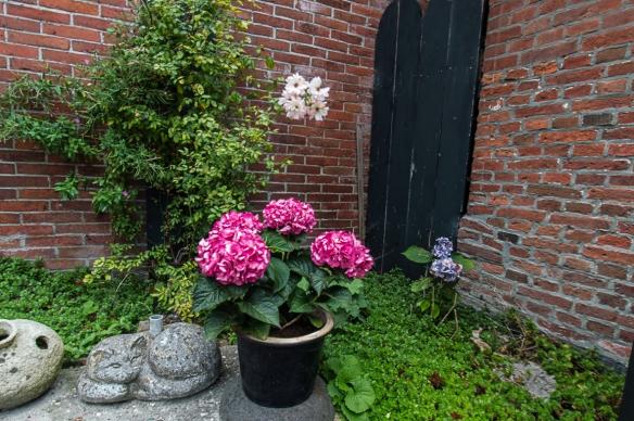Terrasse Lutje Hoeske