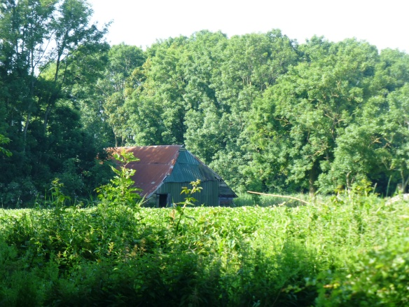 Barn in Tinallinge