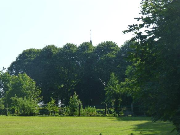 Het kerkje van Tinallinge, verscholen in het groen
